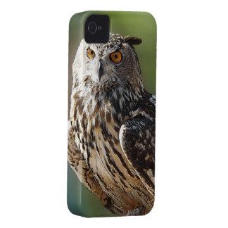 Stunning Eagle Owl with Orange Eyes iPhone 4 Case-Mate Cases