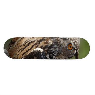 Stunning Eagle Owl with Orange Eyes Skate Board Decks