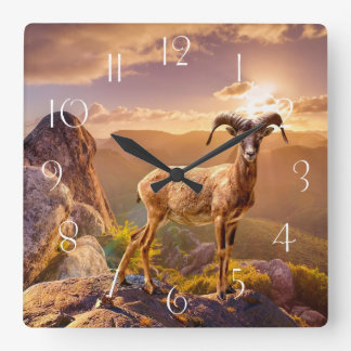 Stunning European Mouflon Square Wall Clock