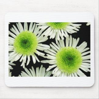 Stunning lime green dahlia print mousemats