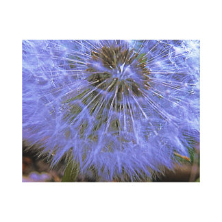 Stunning Midnight Blue Fairy Dandelion Canvas Print