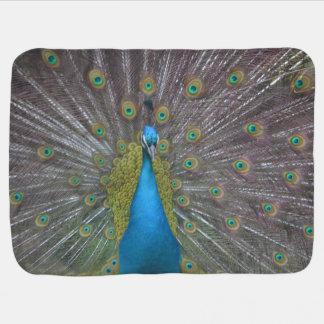 Stunning Peacock Baby Blanket