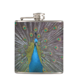 Stunning Peacock Hip Flask