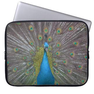 Stunning Peacock Laptop Sleeve
