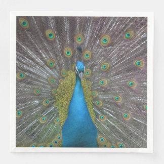 Stunning Peacock Paper Napkin