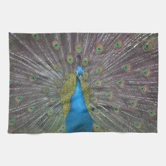 Stunning Peacock Tea Towel