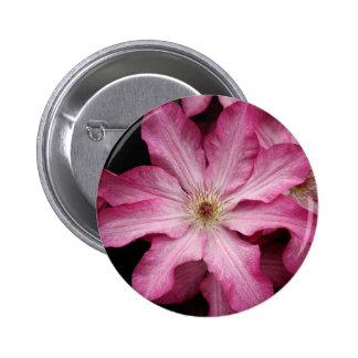 Stunning pink clematis print pins