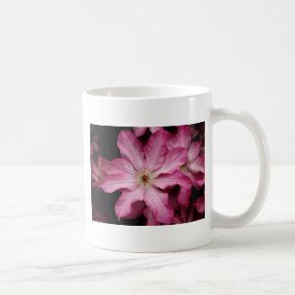 Stunning pink clematis print coffee mugs