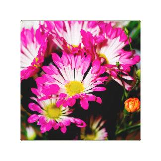 Stunning pink flowers canvas print