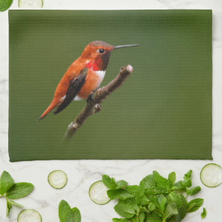 Stunning Rufous Hummingbird on the Cherry Tree Tea Towel
