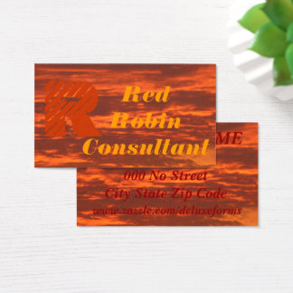 Stunning Skies Business Card