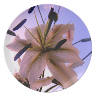 Stunning Soft Lilly Closeup Plate