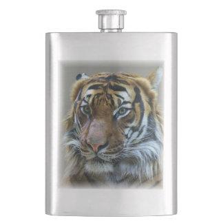 Stunning tiger portrait flasks