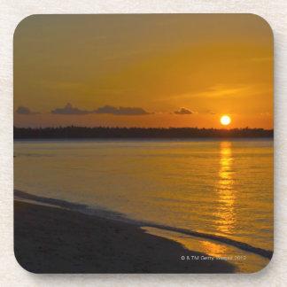 Stunning Tropical Sunset Coaster
