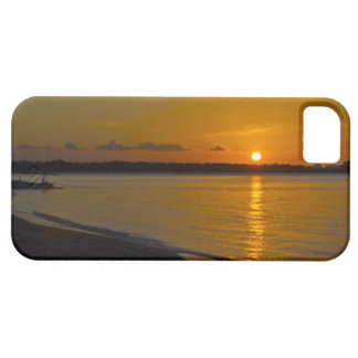 Stunning Tropical Sunset iPhone 5 Cases