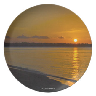 Stunning Tropical Sunset Plate