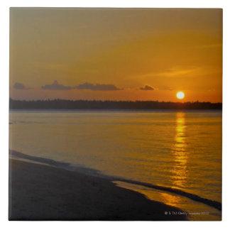 Stunning Tropical Sunset Tile