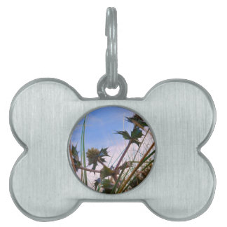 Stunning Unique Eye Catching Thistle Pet ID Tag