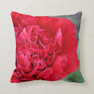 Stunning vibrant poppy cushion. cushion