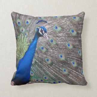 Stunning Vintage Peacock Cushion