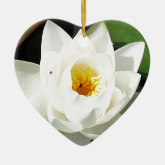 Stunning Waterlily With Gold Centre Christmas Ornament