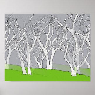 Stunning White Trees Art Poster