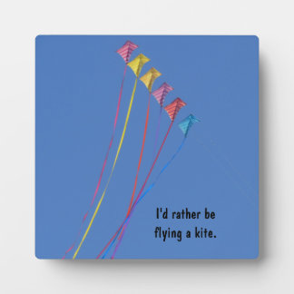 Stunt Kite Flying in the Sky Display Plaques