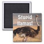Stupid llamas! fridge magnet