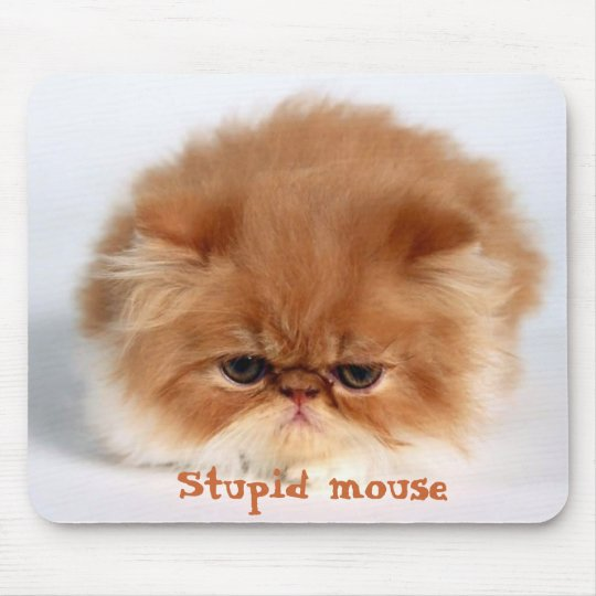 Stupid Mouse Mouse Mat