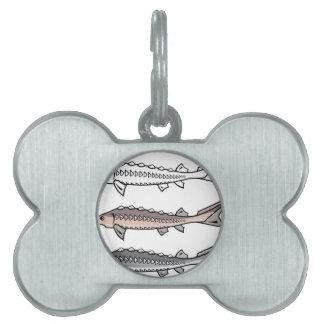 Sturgeon rare fish pet ID tag