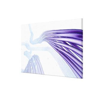 Stylised nerve fibers canvas print