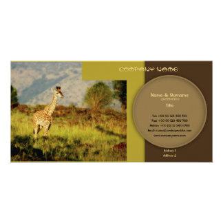 Stylish giraffe safari profile cards customizable custom photo card