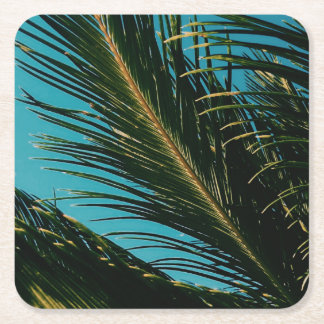 Stylish Palm Tree Leaves Square Paper Coaster