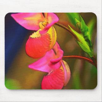 Stylized Phragmipedium Orchid Flower Duo Mouse Pad