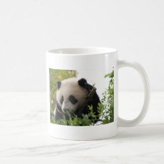Su Lin, giant panda bear cub at the San Diego Zoo Coffee Mug