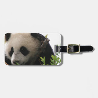 Su Lin, giant panda bear cub at the San Diego Zoo Luggage Tag