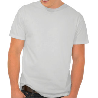 Subdued Earth Round Logo [Ice Grey] T Shirts