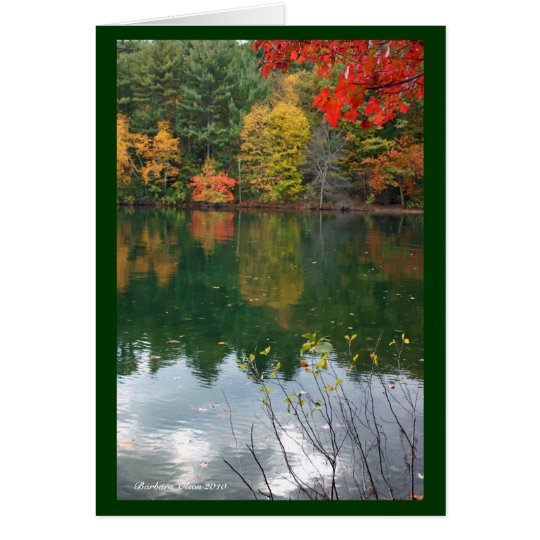 Subtle magnetism  in Nature: Walden Pond Card