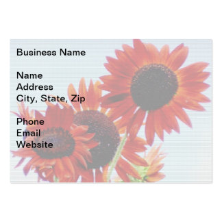 Subtle Sunflowers Pack Of Chubby Business Cards