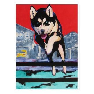 Suburban Wolf Postcard