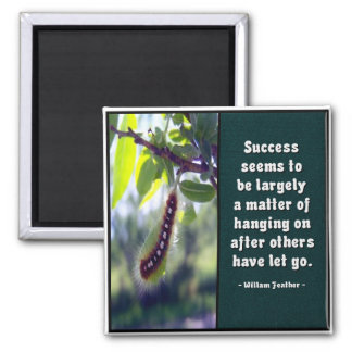 Success Seems To Be... Magnet