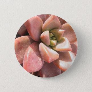 Succulent Cactus 6 Cm Round Badge