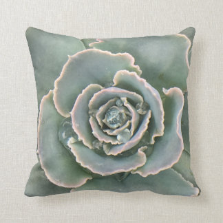 Succulent Cushion