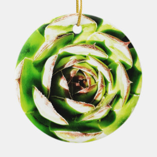 Succulent Dble-sided Ornament