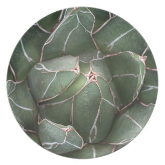Succulent Flower Close Up Photo Melamine Plate