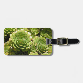 Succulent Luggage Tag
