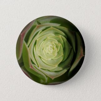 succulent plant 6 cm round badge