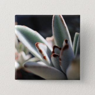 Succulent Plant Button