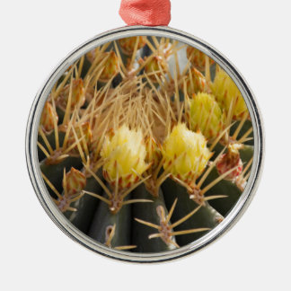 succulent plant in the garden christmas ornament