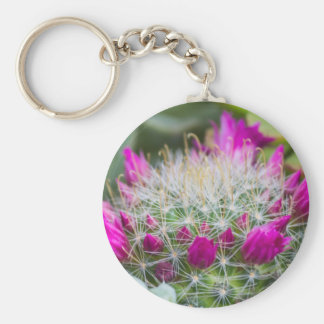 succulent plant key ring
